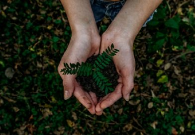 Why Planting Enriches The Life Of A Child