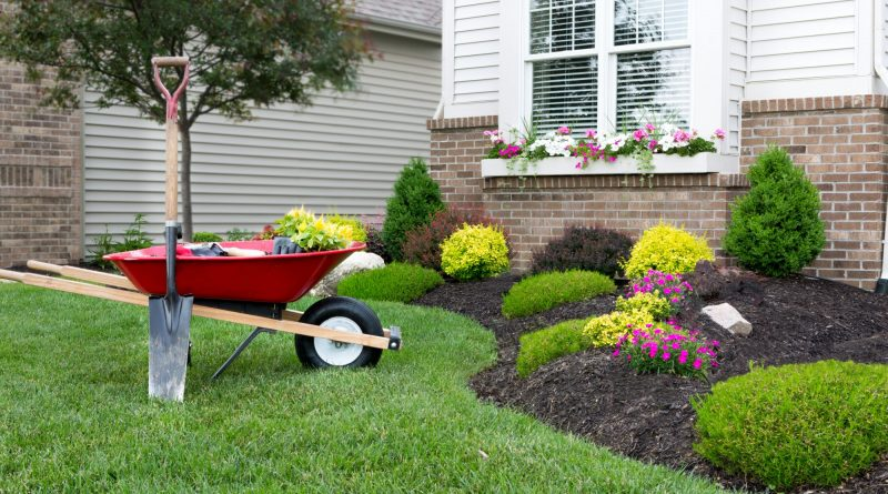 Do You Want to Spend Less Time Caring for Your Yard? Here's What You Need to Do